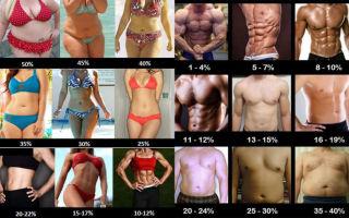 Процент жира в организме женщины и мужчины, фото примеры