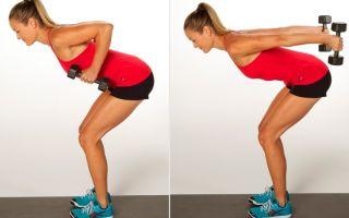 Упражнения на трицепс для женщин в домашних условиях (фото)
