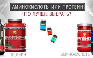 Аминокислоты или протеин, что лучше, как сочитать
