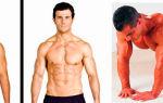 Полезные свойства l-карнитина: улучшение метаболизма, похудение