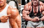Суперсеты на плечи для мужчин — пример тренировки