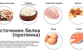 Продукты с протеином, 24 натуральных источников протеина