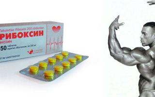 Рибоксин в бодибилдинге: как принимать, правильный курс и отзывы