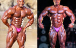 Флекс уиллер (flex wheeler) биография и бодибилдинг