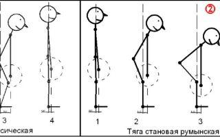 Мертвая становая тяга: техника выполнения, отличия от румынской