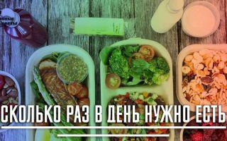 Сколько раз в день нужно есть чтобы похудеть: 3 или 5 раз в день?