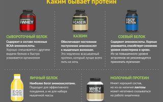 Как принимать протеин для похудения, какой вид протеина лучше