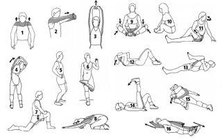 Растяжка мышц после тренировки, упражнения для растяжки