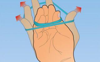 Как укрепить запястья рук, упражнения для укрепления кистей, запястье и предплечий