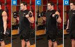 Сгибания зоттмана — подъемы зоттмана, техника упражнения
