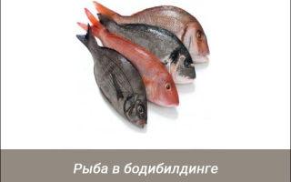 Польза рыбы в бодибилдинге