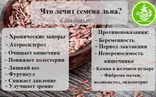 Семя льна: как принимать, полезные свойства и противопоказания