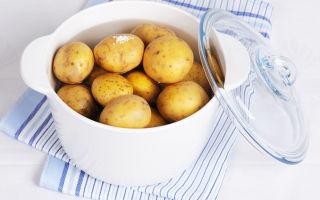 Картофель в бодибилдинге: польза и вред, блюдо с картофелем