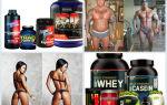Спортивное питание для рельефа: для мужчин и женщин