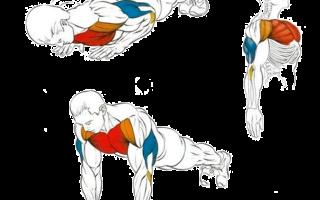 Как накачать мышцы дома | в домашних условиях