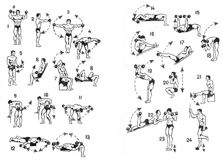 группа упражнений в домашних условиях с картинками пусть можешь