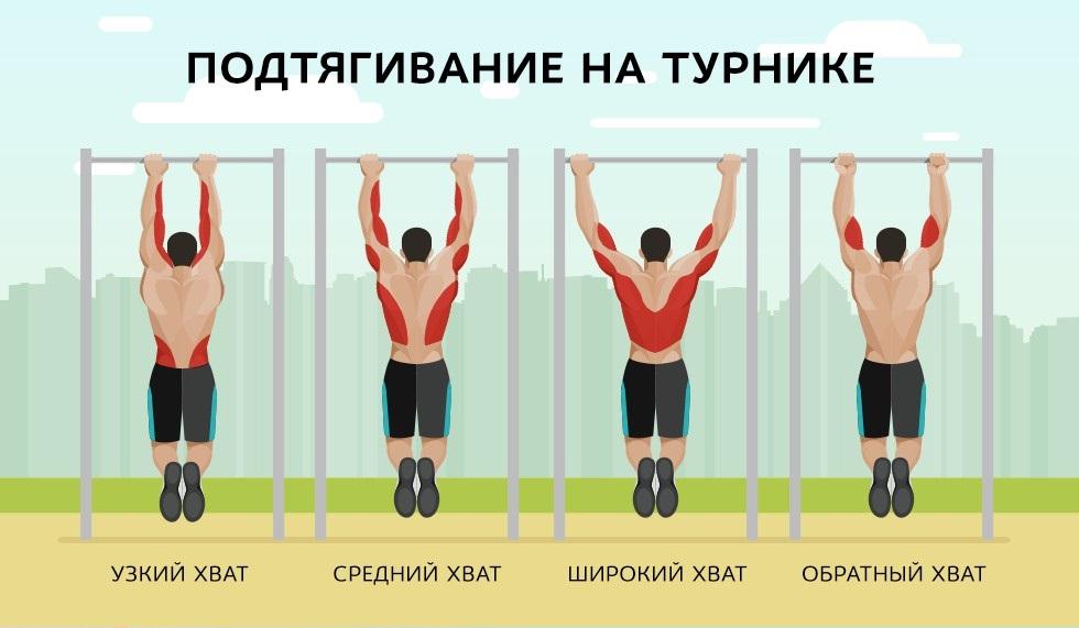 идее виды подтягиваний группа мышц в картинках неё