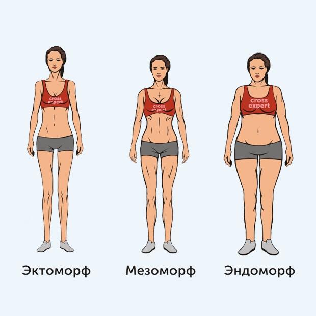 что строить астенический тип телосложения фото аву скачать обои