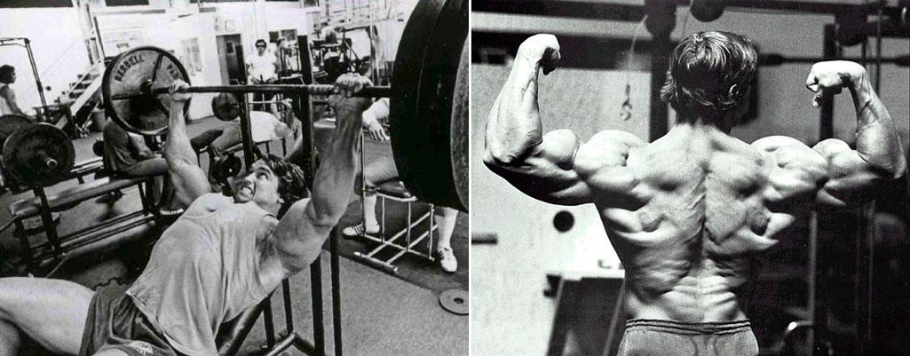 Тренировка груди и спины в один день программа тренировки