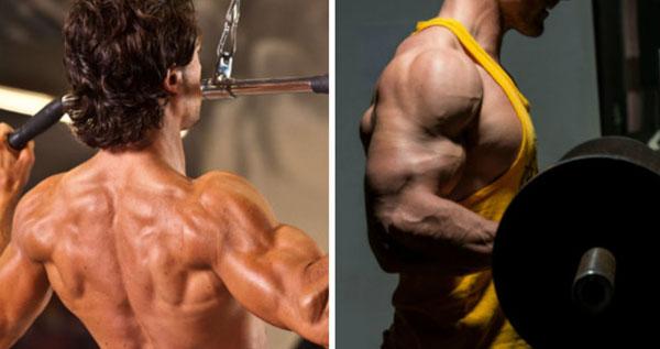 Программа тренировки спины и бицепса в один день